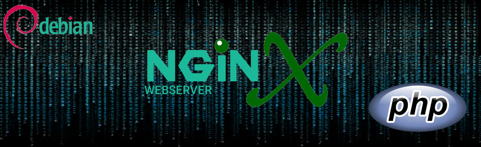"Nginx Proxy: ""cache file has too long header"""